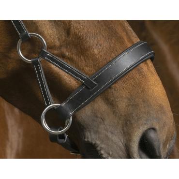NORTON PRO - Side-Pull cuir Confort havane • Sud Equi'Passion
