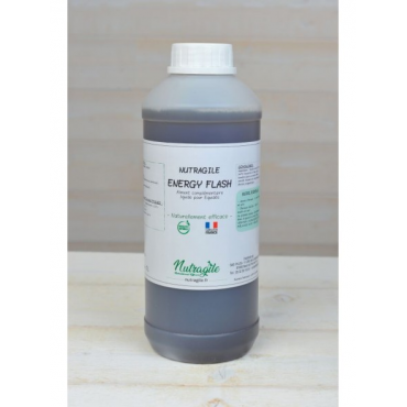 NUTRAGILE - Energy Flash liquide • Sud Equi'Passion