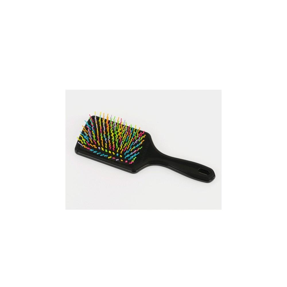Brosse à crins multicolore