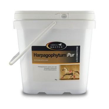 Harpagophytum pur semoulette
