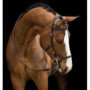 HORSEWARE - Rambo Micklem Competition Bridle • Sud Equi'Passion