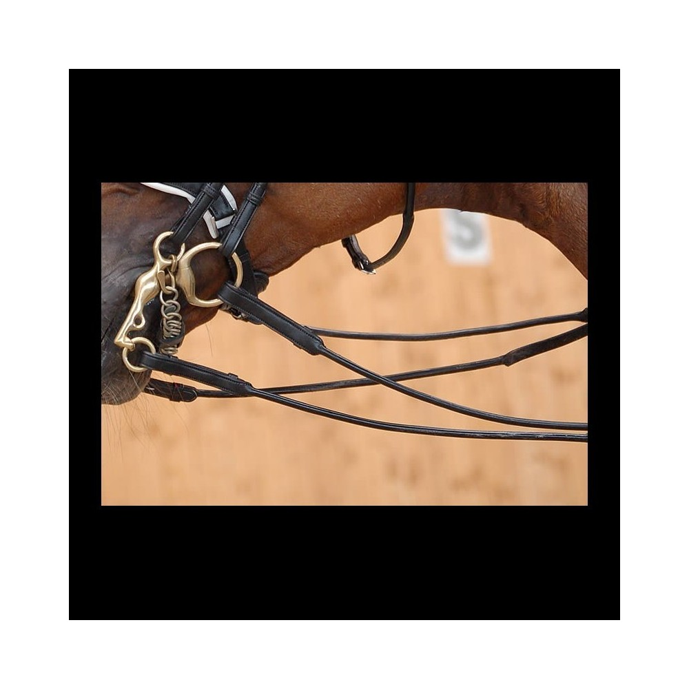 Rênes de Bride Cuir Rond -Mains Cuir Plat- 13mm B253 Dressage Collection